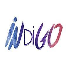 Indigo World